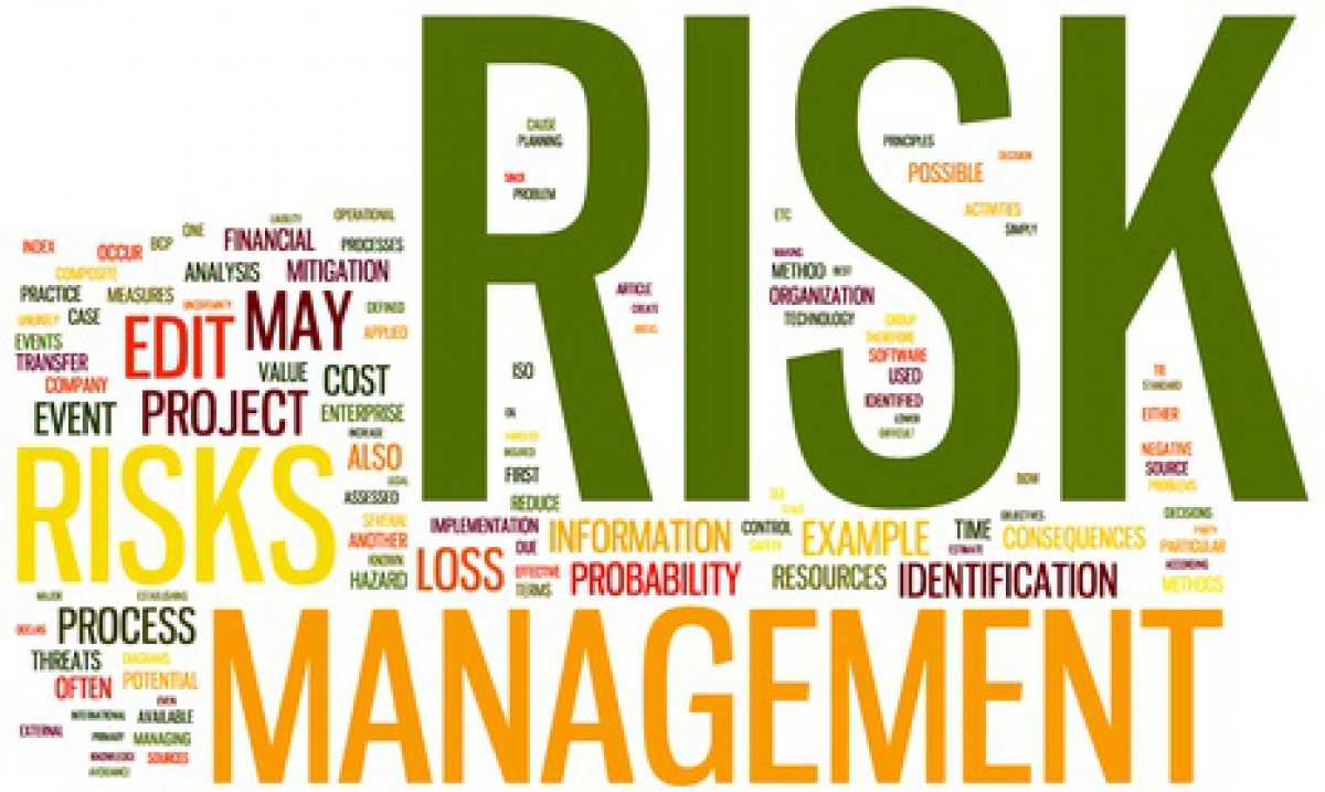 Certified Risk Management Professional