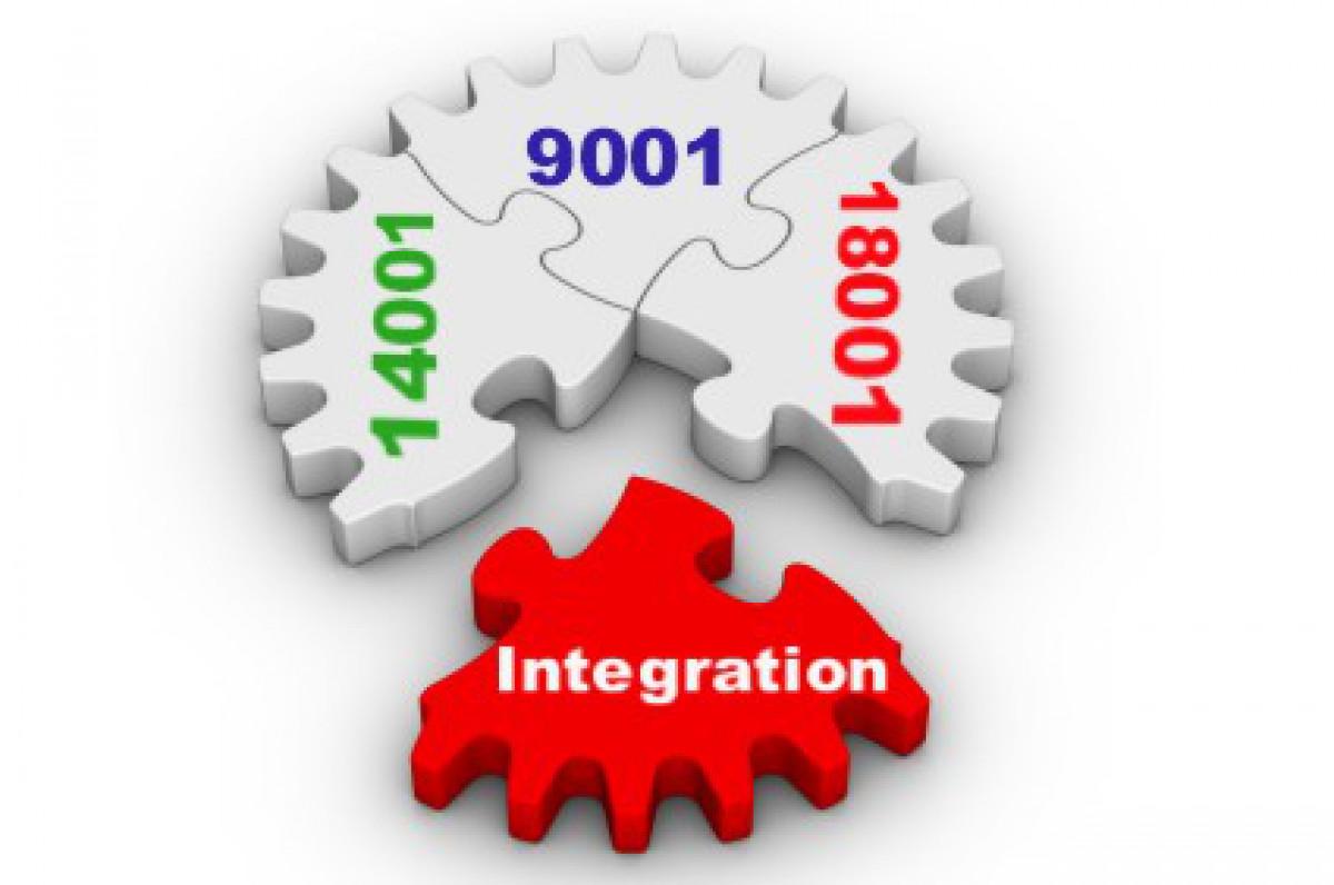 إستشارى نظام الإدارة المتكامل IMS